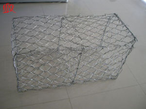 Specializing in The Production of Quality Gabion pictures & photos