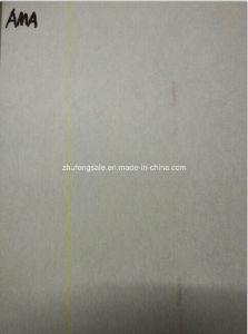 Ama Aramid Paper pictures & photos