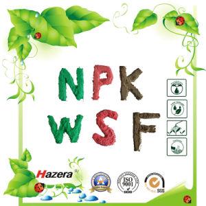 20-10-30 100% Solubility NPK Fertilizer with EDTA Trace Elements pictures & photos