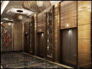 China modern elevator passenger elevator lift china for Modern elevator design