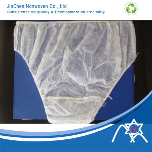 PP Spunbond Nonwoven Fabric for Underpants pictures & photos