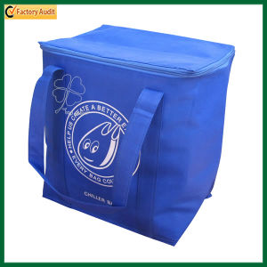 Cheap Reusable Zipper Closure Insulated Lunch Cooler Bag (TP-CB261) pictures & photos