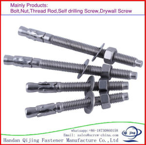 Wedge Anchor Bolt M12 pictures & photos