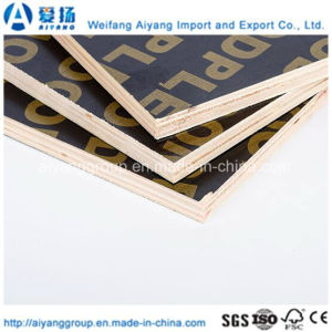 2mm-18mm Black Film Faced Plywood with Logo pictures & photos