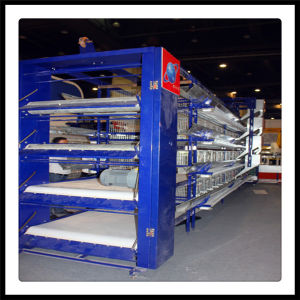 H Type Battery Cage pictures & photos