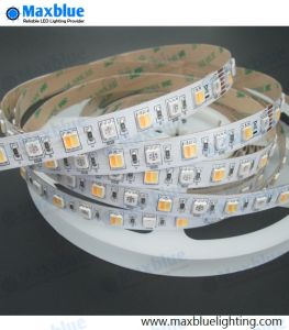 RGB+CCT 5 Colors LED Strip Light pictures & photos