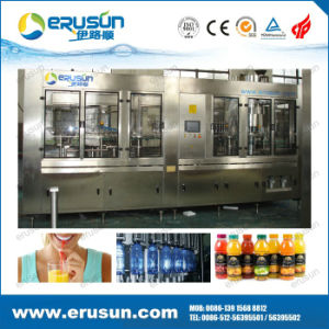 Hot Sale Fruit Juice Hot Filling Machine pictures & photos