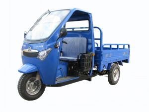 Fashionable 175CC Tricycle (DF175ZH-C)