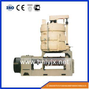 Economical Rice Bran Oil Press Machine pictures & photos