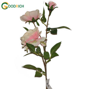 3heads Rose Silk Flower for Decoration pictures & photos