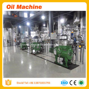 High Oil Yield Rate Camellia Sinensis Seeds Oil Extraction Machine Teaseeds Oil Extraction Machine pictures & photos