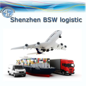 Door to Door Shipping Service to Singapore (Sea freight/Air freight) pictures & photos