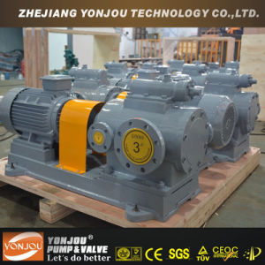 Three Screw Pump, Concrete Screw Pump, Heat-Preserving Bitumen Pump pictures & photos