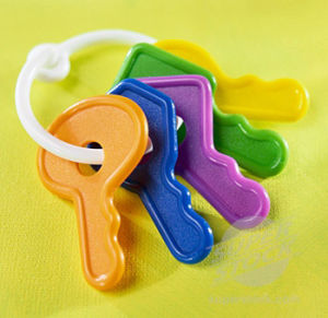 High Quality Plastic Products for Baby Toys (ZB-03) pictures & photos