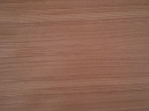 Fancy Veneer pictures & photos