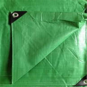 We Manufacture Light Green China Factory PE Tarpaulin pictures & photos