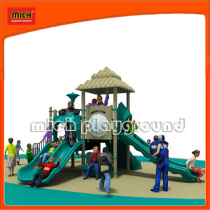 Functional China Outdoor Playground Equipment (5242A) pictures & photos