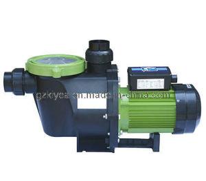 Plastic, Self-Priming Pumps (PP100-PP400) for Swimming Pool