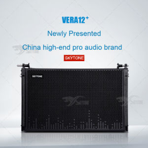 Outdoor Show Audio Vera12+ Upgraded Passive Line Array Speaker System pictures & photos