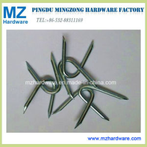 Electro Galvanised Wire Staples Fencing Staples U Type Nail pictures & photos