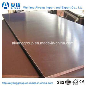 12mm Brown Film Faced Plywood with Good Quality pictures & photos