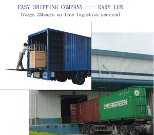 Consolidate Shipping Service Provide by Easy Shipppin Company pictures & photos