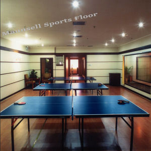 Professional Indoor Table Tennis Flooring pictures & photos