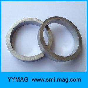 Fecrco Coil Ring Magnet for Cheap Sale pictures & photos