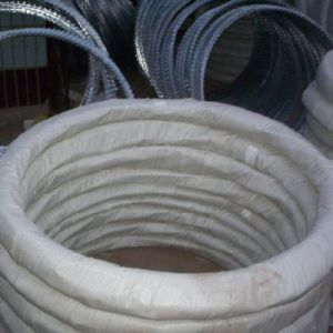 Competitive Pruice Bto Type Galvanized Razor Wire pictures & photos