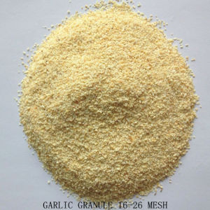 Dehydrated Garlic (8-16mesh, 16-26mesh, 26-40mesh, 40-80mesh) pictures & photos