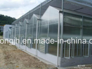 PC-Sheet Tunnel Greenhouse for Farm