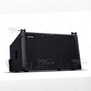 Guangzhou PRO Audio Supplier Skytone Vera12 Line Array System DJ Equipment pictures & photos
