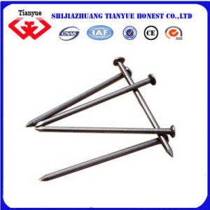 50mm Common Steel Nails (TYB-0016) pictures & photos