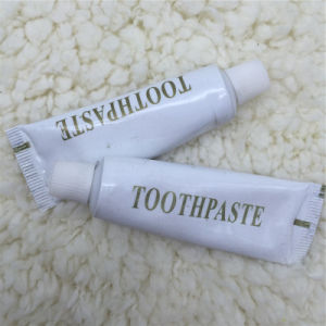 Toothpaste Hotel Amenities OEM Manufacturer 2 pictures & photos