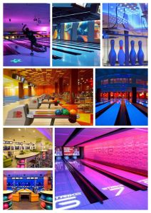 Brunswick Bowling Equipment with Installation (GSX) pictures & photos