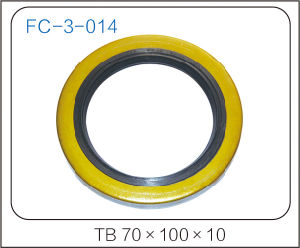 Hight Quality Outside Framework Oil Seal pictures & photos