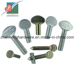 Stainless Steel Thumb Bolts (ZH-FB-009)