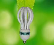 5U 125W Lotus Energy Saving Lamp