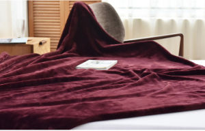 Hot Sale Sr-B170212-1 Super Soft Flannel Fleece Coral Fleece Blanket pictures & photos