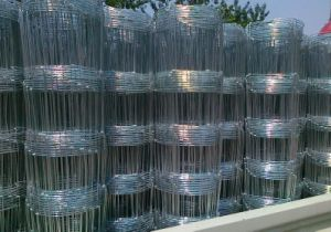 Hot Dipped Galvanized Fixed Knot Wire Mesh Grassland Fence, Farm Fence, Cattle Fence pictures & photos