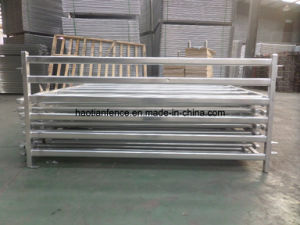 Galvanized 6 Bars Steel Cattle Panels pictures & photos