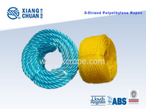 3-Strand Polyethylene Rope pictures & photos