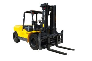Shantui Forklift 10 Ton with Chinese Engine pictures & photos