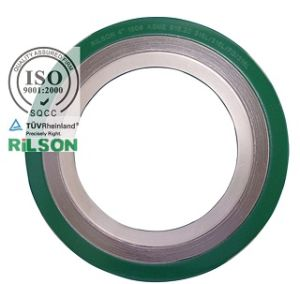 Asme B16.50 Flange Spiral Wound Gasket 316L Ss/ Graphite with Outer & Inner Ring (RS-CGI) pictures & photos