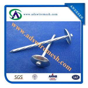Super Quality Umbrella Head Roofing Nails (ADS-RN-05) pictures & photos