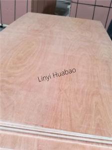 15mm Bed Slat Plywood Poplar Core E1 Glue Okoume Face/Back pictures & photos