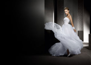 Flower A-Line Beaded Bridal Wedding Dresses (AL008) pictures & photos