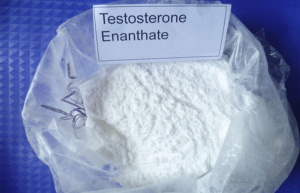 Good Quality Testosterone Enanthate/Testosterone En/Test Enanthate pictures & photos