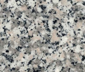 Rosa Beta Granite Tiles for Flooring/Stair