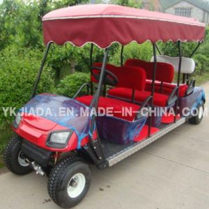 Electrical Utility Vehicle with Rain Cover (JD-GE503A) pictures & photos